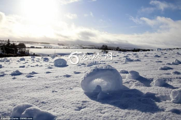 These fascinating pictures show hundreds of snow rollers - a strange and rare weather phenomenon consisting of naturally-made snowballs